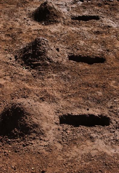 Mound graves
