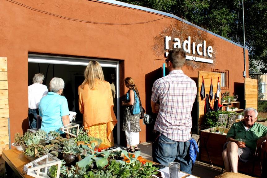 radicle crowd