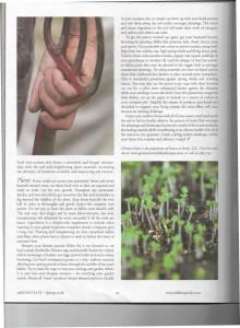 Spring Green - Cultivating Good Garden Sense - Spring 2008_Page_3